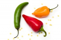 Eating hot and spicy food clears nasal congestion