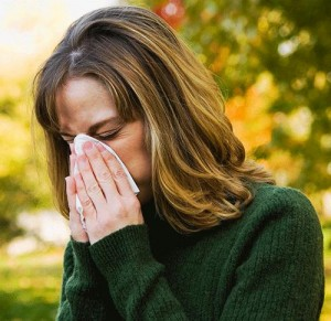 What are the causes of sneezing allergy