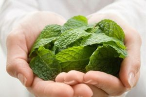 Natural Home Remedy Using Mint Leaves and Lemon