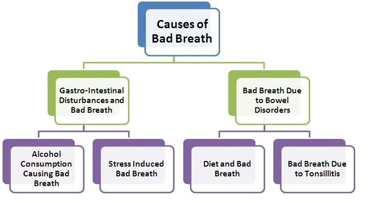 bad breath (halitosis) symptoms, causes and home remedies – saloni, Human Body