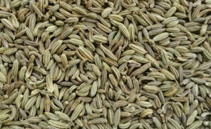Natural home remedy using fennel seed powder