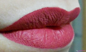 DMGM-Photofix-lip-color-plumfrost-lip-swatch