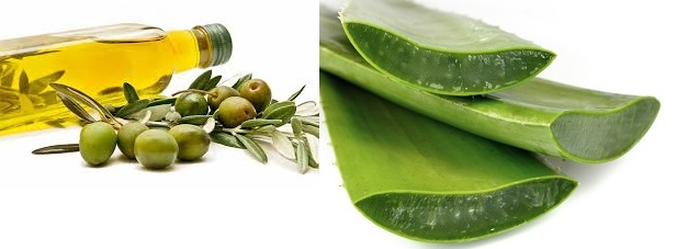 Aloe and olive oil 2