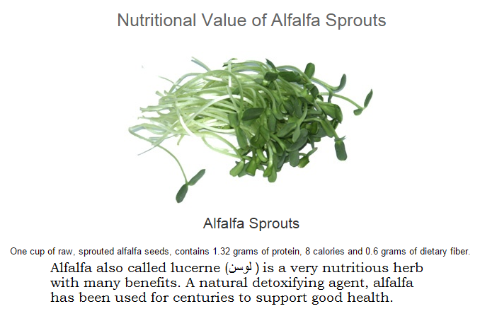 FireShot Capture 149 - Alfalfa Sprouts Nutrients_ - http___www.health-alternatives.com.png